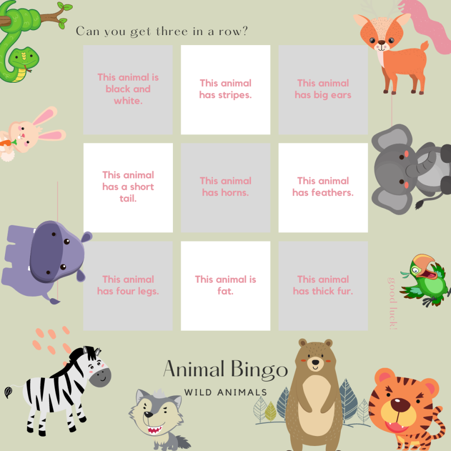 wild animal bingo